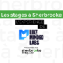 Les stages à Sherbrooke - Chez Like Minded Labs