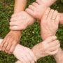 Programme d'aide aux entrepreneurs